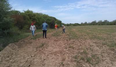 Programa Forestal: plantarán 4 mil plantines de algarrobo blanco