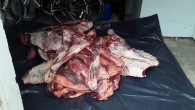 Inspeccionaron carnicerías de Vilmer y Beltrán