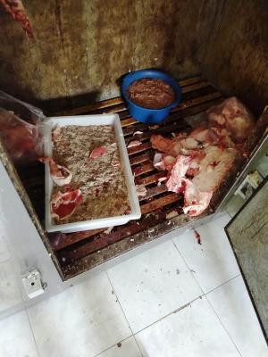 Detectan irregularidades y decomisan uno 300 kilos de carne clandestina