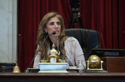 La senadora Claudia de Zamora presidió parte de una histórica sesión en el Senado