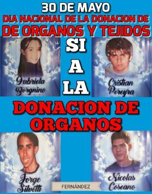 Día de la Donación de órganos: emotivo homenaje a los «Ángeles» de Fernández