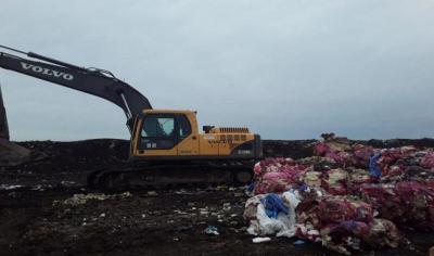Macabro: Hallaron nueve fetos en un basural en avanzado estado de descomposición