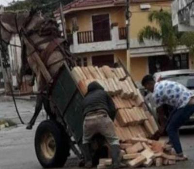 Un caballo quedó suspendido en el aire por exceso de peso del carro que tiraba