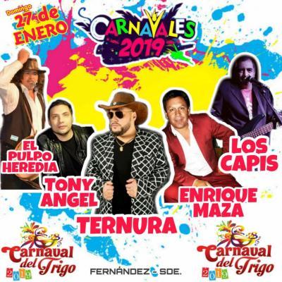 Fernández: se viene el bailable de carnaval 2019 más grande de la región