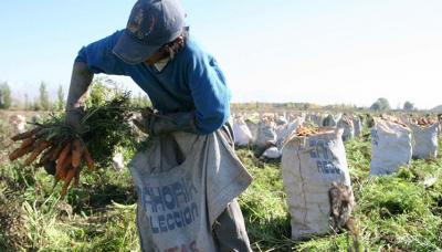 Secretaría de Trabajo denunció  libretas de trabajo falsificadas